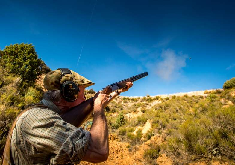 28 Gallery Partridge Shooting In Spain