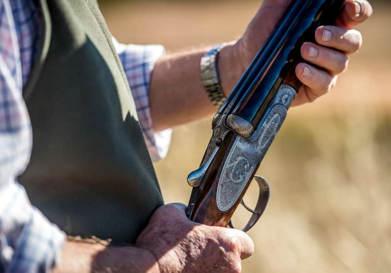 31 Gallery Partridge Shooting In Spain