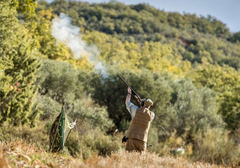 37 Gallery Partridge Shooting In Spain