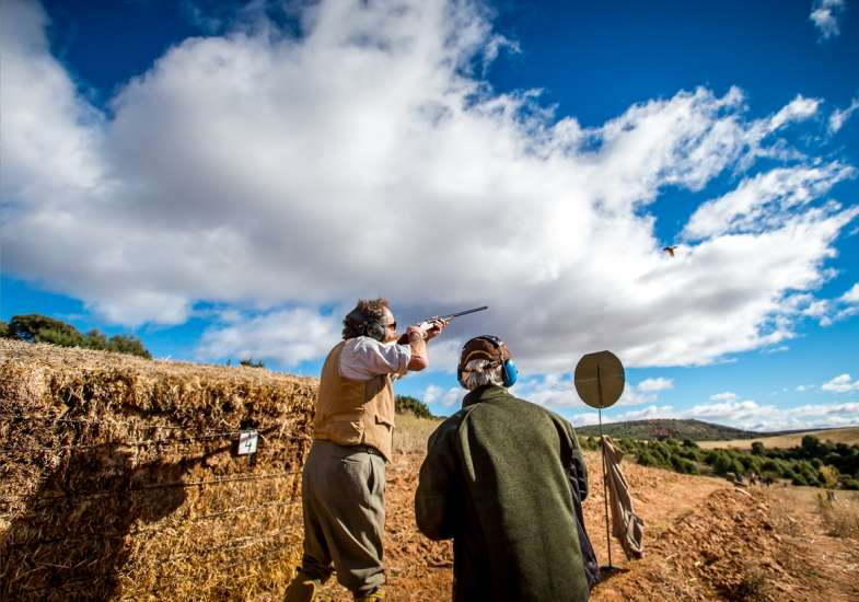 38 Gallery Partridge Shooting In Spain